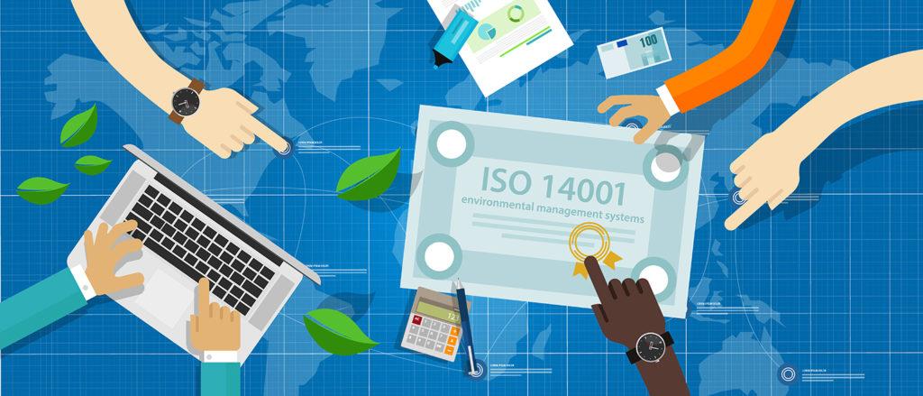 Collega's werken samen om het ISO 14001 certificaat te halen. Een goed milieumanagementsysteem is teamwork