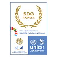 UNITAR_SDG Pioneer Award_EN_2020